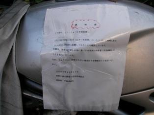 aobabaiku2.JPG